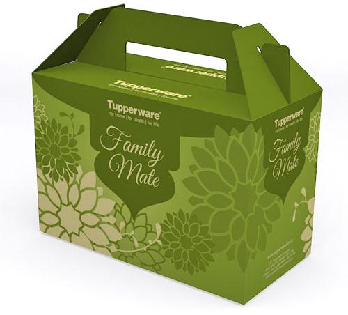 Packaging Idul Fitri (Box Kue Lebaran)